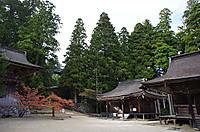 Kouya05