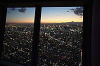 Tokyo21